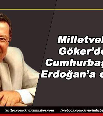 Milletvekili Göker'den, Cumhurbaşkanı Erdoğan'a eleştiri