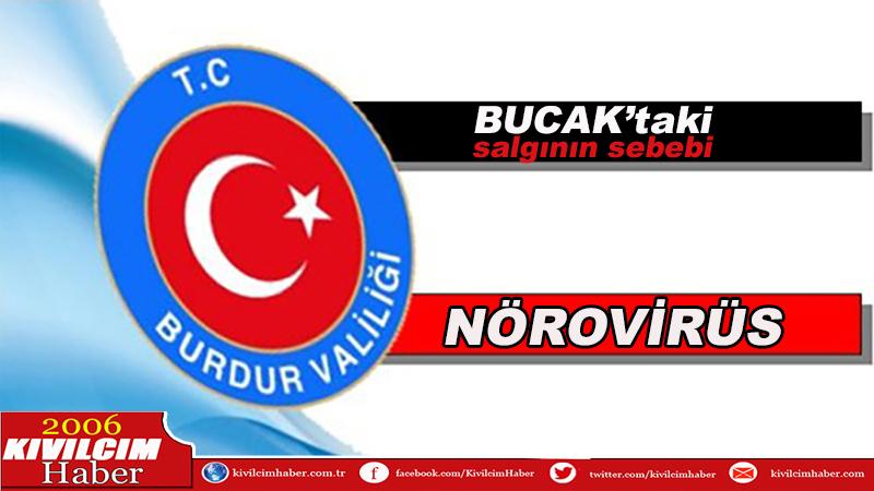 Bucak'ta salgının müsebbibi nörovirüs