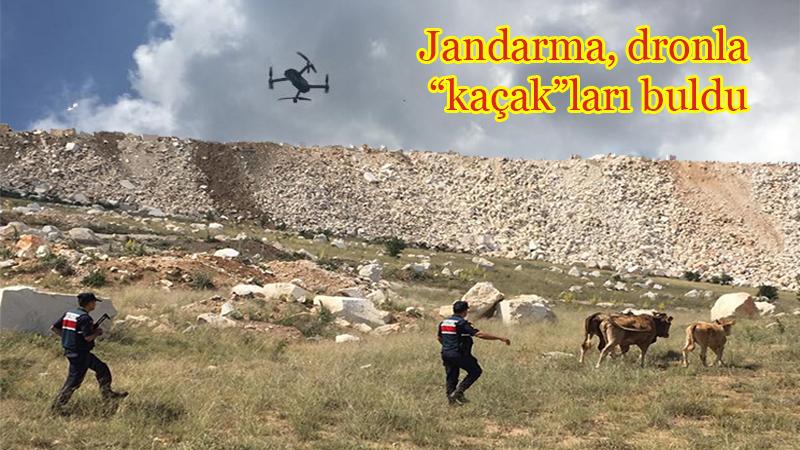 """Jandarma, """"kaçak""""ları dronla buldu"""